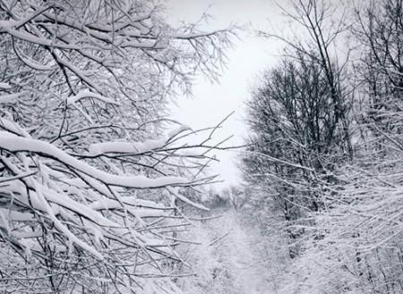 Talvirenkaiden vaihto lähestyy